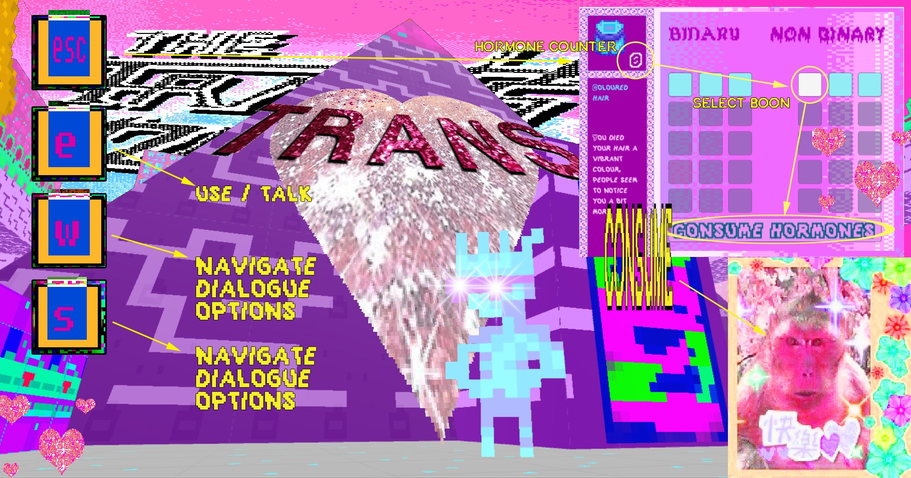 Crowded screen with faded pixelated person and a large heart with the word 'trans' above it. Boxes saying 'esc' and 'e' and 'w' and 's' with menu items next to them. A monkey face with sticker decorations around it in a frame. A grid with 'binary' and 'non binary' with small squares with arrows pointing to 'consume hormones'.